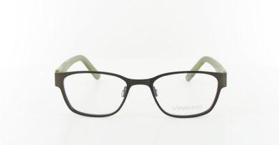 Lize - Bruin/Groen